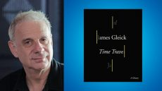 James Gleick, Time Travel: A History
