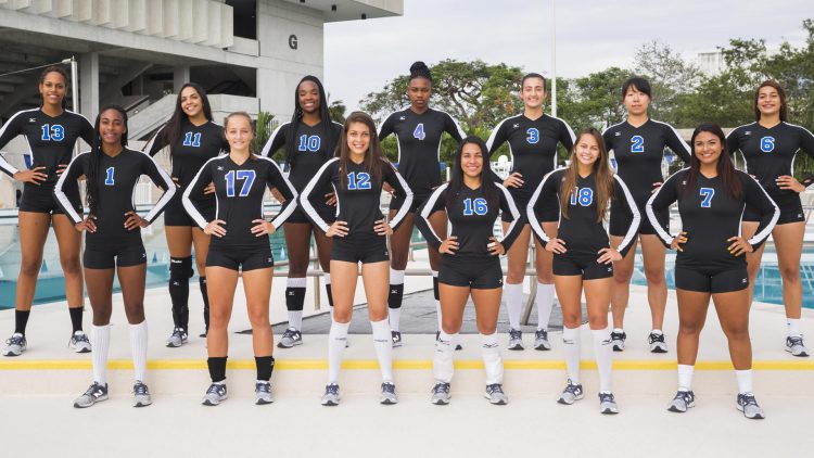 Lady Sharks Team Picture