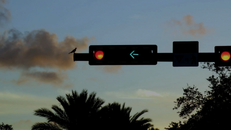 Photograph of traffic light